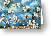 Plants Greeting Cards - Limestone County Cotton Greeting Card by Carole Foret