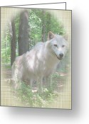 Beautiful Face Wolf Greeting Cards - Linen Wolf Pose Greeting Card by Debra     Vatalaro