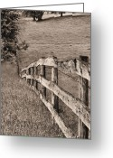 Barbed Wire Fences Photo Greeting Cards - Lines BW Greeting Card by JC Findley
