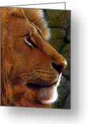 African Cats Greeting Cards - Lion King Greeting Card by Jurek Zamoyski