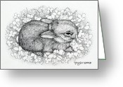 Hare Drawings Greeting Cards - Little Big Ears Greeting Card by Tanja Ware