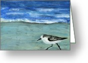 Debbie Brown Greeting Cards - Little bird at the beach Greeting Card by Debbie Brown