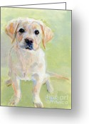 Paws Greeting Cards - Little Boy Greeting Card by Kimberly Santini