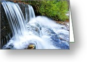 Trout Stream Greeting Cards - Little Elbow Waterfall and Williams River Greeting Card by Thomas R Fletcher