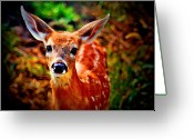 Fawns Greeting Cards - Little Kissy Lips Greeting Card by Emily Stauring