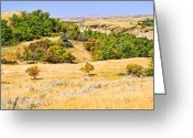Prairie Landscape Greeting Cards - Little Missouri River Grasslands Greeting Card by Bill Morgenstern