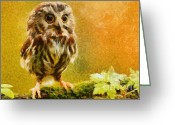 Owl Prints Greeting Cards - Little Owl Greeting Card by Elizabeth Coats