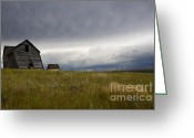 Alberta Prairie Landscape Greeting Cards - Little Remains Greeting Card by Bob Christopher