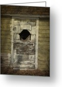 Shed Photo Greeting Cards - Little Shed Door Greeting Card by Larysa Luciw