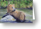 Alaska Greeting Cards - Little Toklat Study Greeting Card by Dee Carpenter