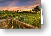 Florida Bridge Greeting Cards - Little White Bench Greeting Card by Debra and Dave Vanderlaan