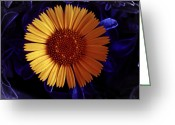 Burgeon Greeting Cards - Little Yellow Flower Greeting Card by Nafets Nuarb