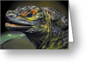 Dragons Greeting Cards - Lizard  Greeting Card by Alessandro Matarazzo
