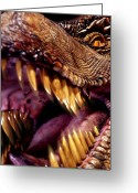 T Rex Greeting Cards - Lizard King Greeting Card by Kelley King