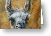 Portraiture Greeting Cards - Llama Baby Greeting Card by Jurek Zamoyski