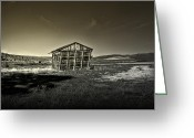 Shed Greeting Cards - Locally Grown Greeting Card by Mark  Ross