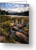 Loch Greeting Cards - Loch Ard From the Reed Beds Greeting Card by John Farnan