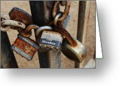 William And Magdalena Green Greeting Cards - Locks Greeting Card by Magdalena Green