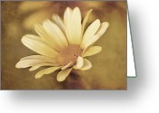Post Mixed Media Greeting Cards - Lone Daisy - Vintage Style Greeting Card by Zeana Romanovna