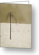 Weather Greeting Cards - Lone Tree and Winter Landscape Greeting Card by Dave Gordon