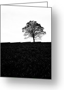 Wide Angle Photo Greeting Cards - Lone Tree Black and White silhouette Greeting Card by John Farnan