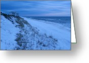 Grayton Beach Greeting Cards - Lonely and Blue Greeting Card by Judy Wanamaker