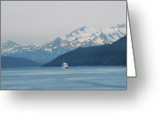 Skagway Greeting Cards - Lonely Ship Greeting Card by Terence Davis
