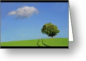 Canary Greeting Cards - Lonely Tree Against Blue Sky Greeting Card by Ernie Watchorn