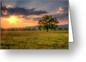 Smoky Mountains Greeting Cards - Lonely Tree In Field Greeting Card by Malcolm MacGregor