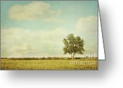 Cumulus Greeting Cards - Lonely tree in meadow with vintage look Greeting Card by Sandra Cunningham