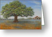 Oak Pastels Greeting Cards - Lonesome Oak  Greeting Card by Pat Neely