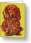 Haired Greeting Cards - Long Haired Dachshund Greeting Card by Nadi Spencer