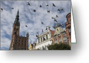 Town Hall Greeting Cards - Long Market With Pigeons, Town Hall Greeting Card by Keenpress