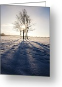 Natural Wolf  Greeting Cards - Long Shadows Greeting Card by Svetlana Sewell