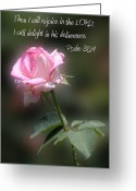 Flower Blossom Greeting Cards - Long Stem Pick Rose Ps. 35v9 Greeting Card by Linda Phelps
