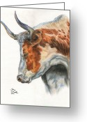 Icon  Pastels Greeting Cards - Longhorn Greeting Card by Jana Goode