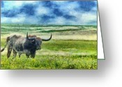 Jeff Kolker Greeting Cards - Longhorn Prarie Greeting Card by Jeff Kolker