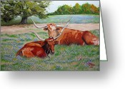 Jimmie Greeting Cards - Longhorns in Bluebonnet Field Greeting Card by Jimmie Bartlett