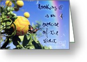 Occurrence Greeting Cards - Look Up Greeting Card by Shaboo Prints