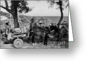 Dusty Road Greeting Cards - Looking back Greeting Card by John Malone