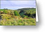 Dry Stone Wall Greeting Cards - Looking Down into Lathkill Dale Greeting Card by Rod Johnson