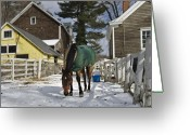 New England Digital Art Greeting Cards - Looking for Stray Hay Greeting Card by Jack Goldberg