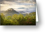 Mountain Laurel Greeting Cards - Looking Glass Sunrise - Blue Ridge Parkway Landscape Greeting Card by Dave Allen