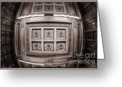 Fisheye Greeting Cards - Looking up Greeting Card by Joan Carroll