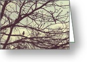 Little Bird Greeting Cards - Lost in Thought Greeting Card by Marianne Beukema