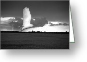 Snowy Night Greeting Cards - Lost Snowy Owl Greeting Card by Joe Gee