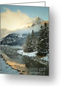 Winter Photos Greeting Cards - Louise Pines Greeting Card by Andrea Hazel Ihlefeld