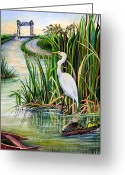 Rural Road Greeting Cards - Louisiana Wetlands Greeting Card by Elaine Hodges