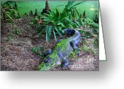 Cypress Knees Digital Art Greeting Cards - Louisianas Fat Gato Greeting Card by Jeanne  Woods