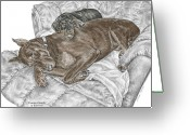 Dobe Greeting Cards - Lounge Lizards - Doberman Pinscher Puppy Print color tinted Greeting Card by Kelli Swan